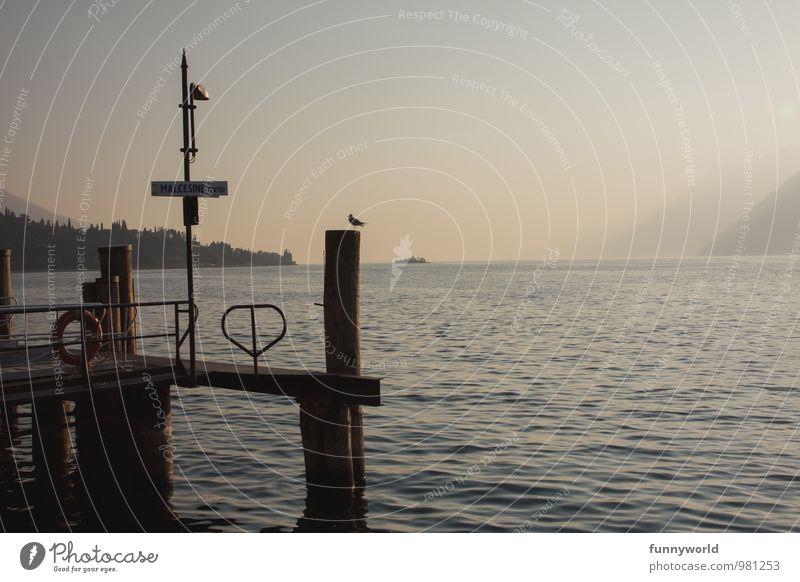 Steg in den Gardasee Ferien & Urlaub & Reisen Sommer Erholung ruhig Ferne Tourismus Vogel Ausflug Wellen Idylle Romantik Italien Sommerurlaub maritim Klischee