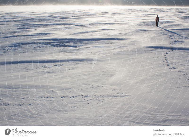 Schnee-Stapfen Ferien & Urlaub & Reisen Sonne Landschaft Ferne Winter kalt Freiheit See Stimmung Horizont träumen Schneefall Eis wandern Lebensfreude