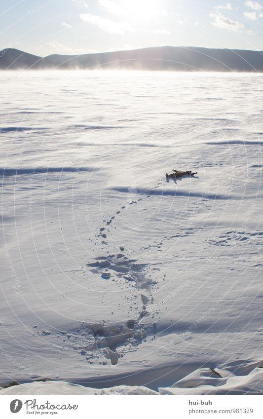 Schnee-Stapfen II Ferien & Urlaub & Reisen Erholung ruhig Freude Winter kalt Wege & Pfade Glück Freiheit Eis Wind wandern Lebensfreude Frost gefroren