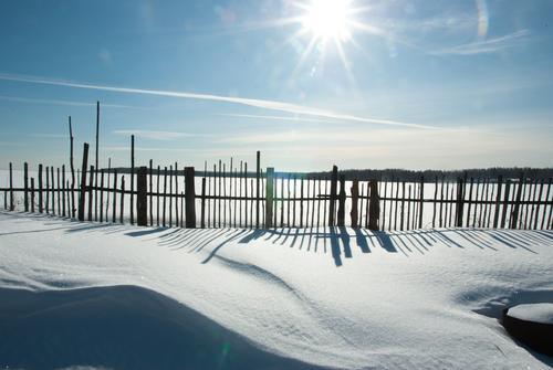 Winter-land Ferien & Urlaub & Reisen ruhig Ferne Schnee Freiheit hell träumen authentisch Schönes Wetter Abenteuer Zaun Dorf Wolkenloser Himmel Schneelandschaft