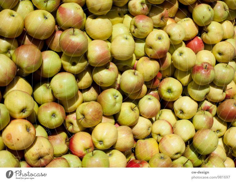 Apfelernte Umwelt Natur Sommer kaufen Gesundheit glänzend natürlich saftig süß mehrfarbig gelb gold grün Farbe Leichtigkeit Ordnung Vergänglichkeit