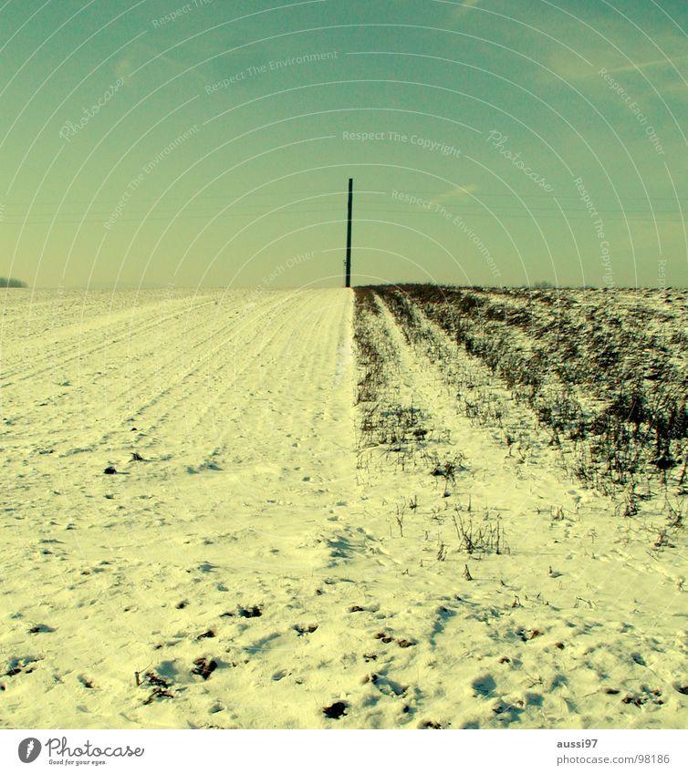 Feldpost Winter kalt Schnee Landschaft Eis Elektrizität Technik & Technologie Landwirtschaft Strommast Hochspannungsleitung karg ungemütlich Elektrisches Gerät