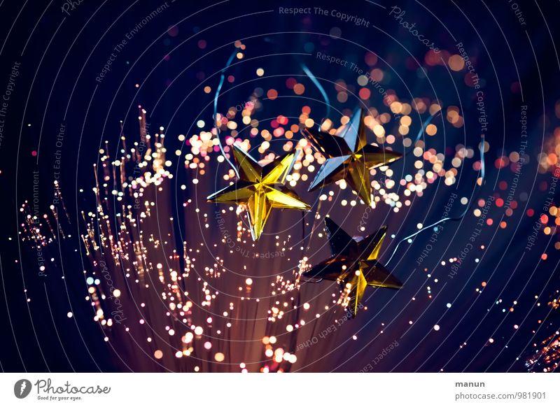 Sternbild Weihnachten & Advent Feste & Feiern Fröhlichkeit Stern (Symbol) Vorfreude Weihnachtsdekoration Sternenhimmel Weihnachtsbeleuchtung Weihnachtsfigur