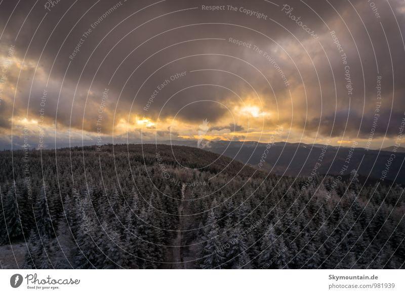 Sunset over Schwarzwald 1 Natur Ferien & Urlaub & Reisen Landschaft Ferne Winter Wald Berge u. Gebirge Umwelt Schnee Glück Freiheit Schneefall Tourismus Wetter Eis wandern