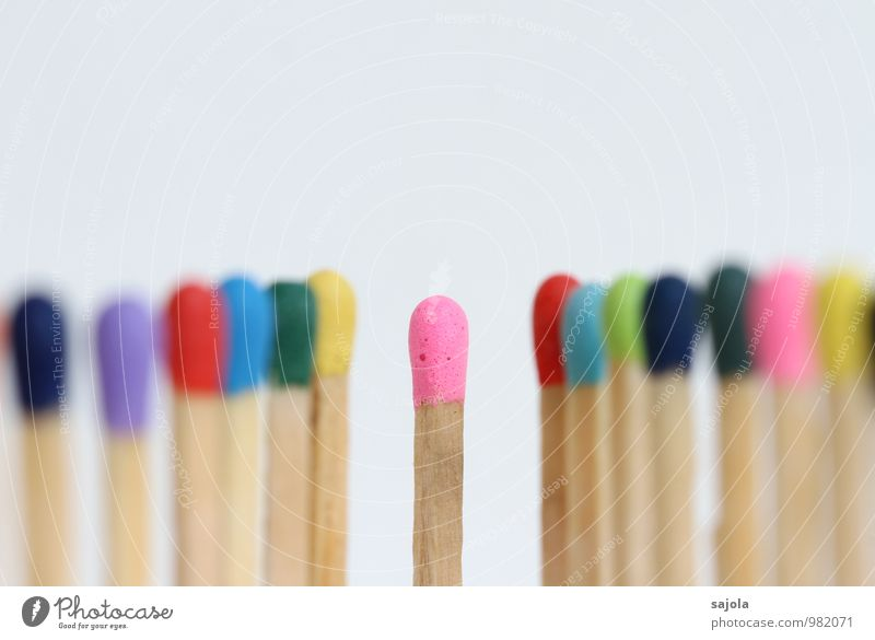 im mittelpunkt Holz Linie rosa Zusammensein Ordnung stehen Kommunizieren Team Zusammenhalt Mitte Reihe Gesellschaft (Soziologie) Teamwork Konkurrenz zentral