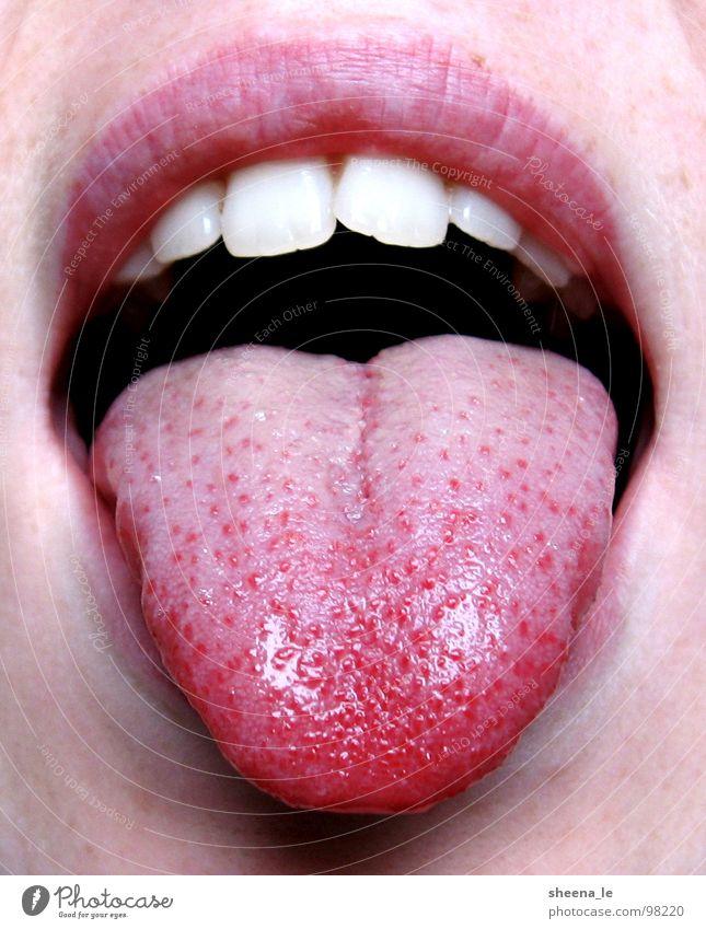 Zunge raus rot Freude Mund lustig rosa Zähne Lippen Küssen Appetit & Hunger genießen frech Nahaufnahme