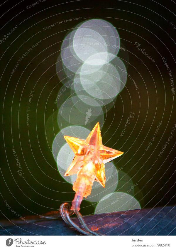 Geburtstagslichter Stern (Symbol) Lichterkette Weihnachtsbeleuchtung Weihnachtsstern glänzend leuchten ästhetisch positiv Stimmung Weihnachten & Advent