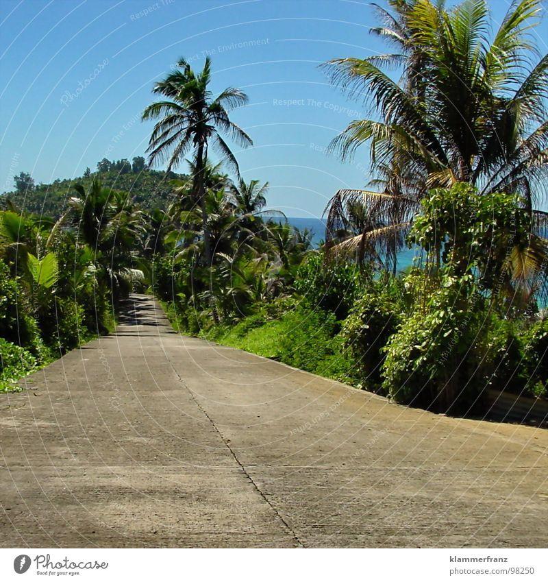 Lebst Du schon oder staust Du noch? Wasser schön Himmel Meer grün blau Ferien & Urlaub & Reisen ruhig Wolken Einsamkeit Ferne Straße Leben Erholung grau