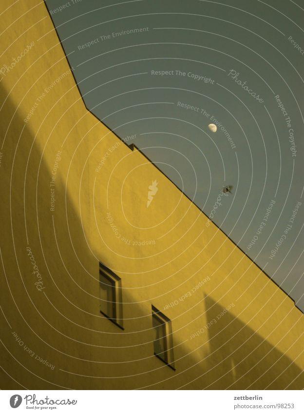 Abends Himmel Haus Fenster Vogel fliegen Fassade Mond Taube Mieter Abheben Vermieter Krähe Schwalben Brandmauer Amsel Halbmond