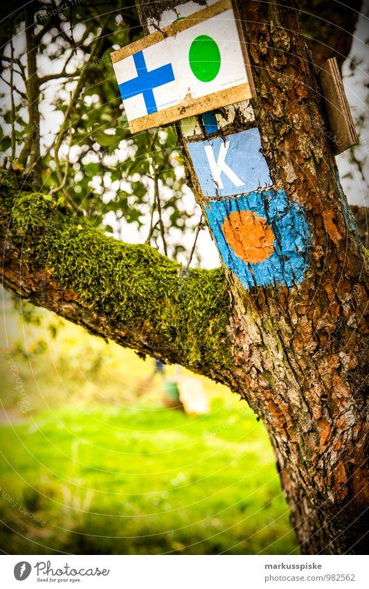 wander wegweiser Leben Freizeit & Hobby Ferien & Urlaub & Reisen Tourismus Ausflug Abenteuer Freiheit Expedition wandern Umwelt Landschaft Sommer Baum Gras