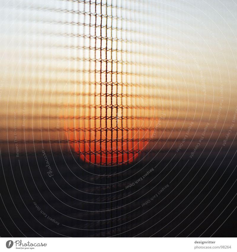 Gaze am Abend 2 Himmel Sonne Wand fliegen Sicherheit Schutz durchsichtig Trennung Gitter Nähgarn Fliegengitter