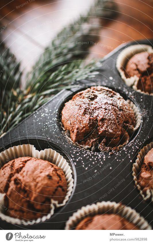 muffins schön Lebensmittel frisch Ernährung Kochen & Garen & Backen lecker Süßwaren Appetit & Hunger Schalen & Schüsseln Teigwaren Fastfood Muffin Tannenzweig Schokoladenkuchen Puderzucker Backform