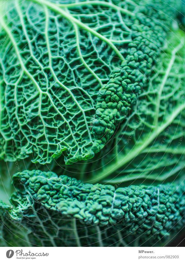 Wirsing II Lebensmittel Ernährung Bioprodukte Vegetarische Ernährung lecker Gemüse Gesunde Ernährung Gesundheit Gefäße Strukturen & Formen grün vitaminreich