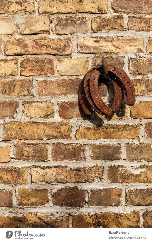 gebrauchtes Glück Haus Bauwerk Gebäude Architektur Scheune Mauer Wand Fassade Pferd Stein Metall Linie braun Gefühle Hufeisen Rost Glücksbringer Farbfoto