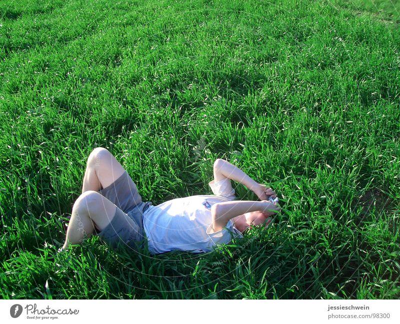 Das Gras wachsen hören Sommer Freude ruhig Erholung Wiese Gras liegen Schönes Wetter Fotografieren Koloss