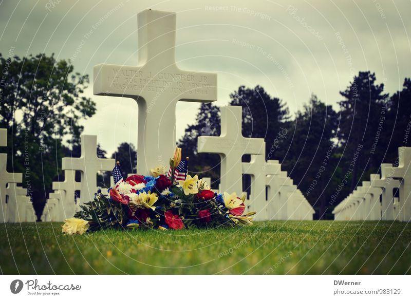 Trauer Mensch grün Umwelt Traurigkeit Gras Tod hell Park Tourismus Hilfsbereitschaft Vergangenheit Blumenstrauß Denkmal Kreuz Krieg