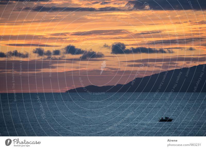 Träumerei Fischereiwirtschaft Landschaft Urelemente Luft Wasser Himmel Wolken Sonnenaufgang Sonnenuntergang Berge u. Gebirge Meer Mittelmeer Insel Ischia