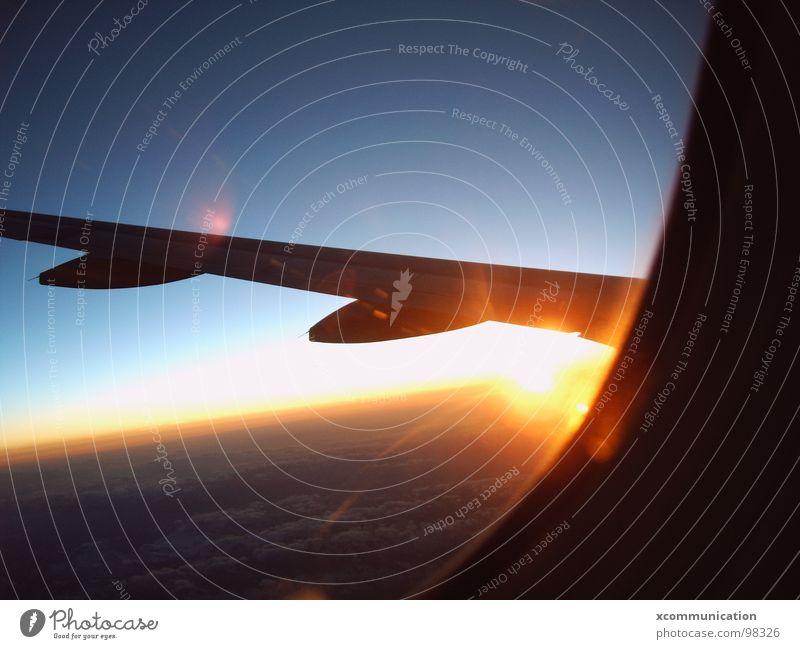 sunrise on plane Horizont Himmel Sonnenaufgang Blauer Himmel Abdeckung Flugzeug Freude Himmelskörper & Weltall Flügel sky bull eye aircraft