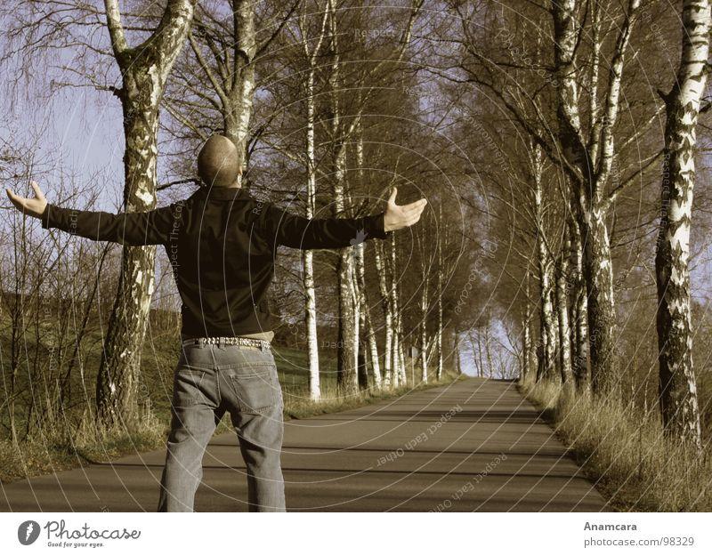 Mein Weg... Mensch Mann Hand Baum Freude Ferne Straße Farbe dunkel Herbst Freiheit Wege & Pfade Angst Arme gehen Hoffnung