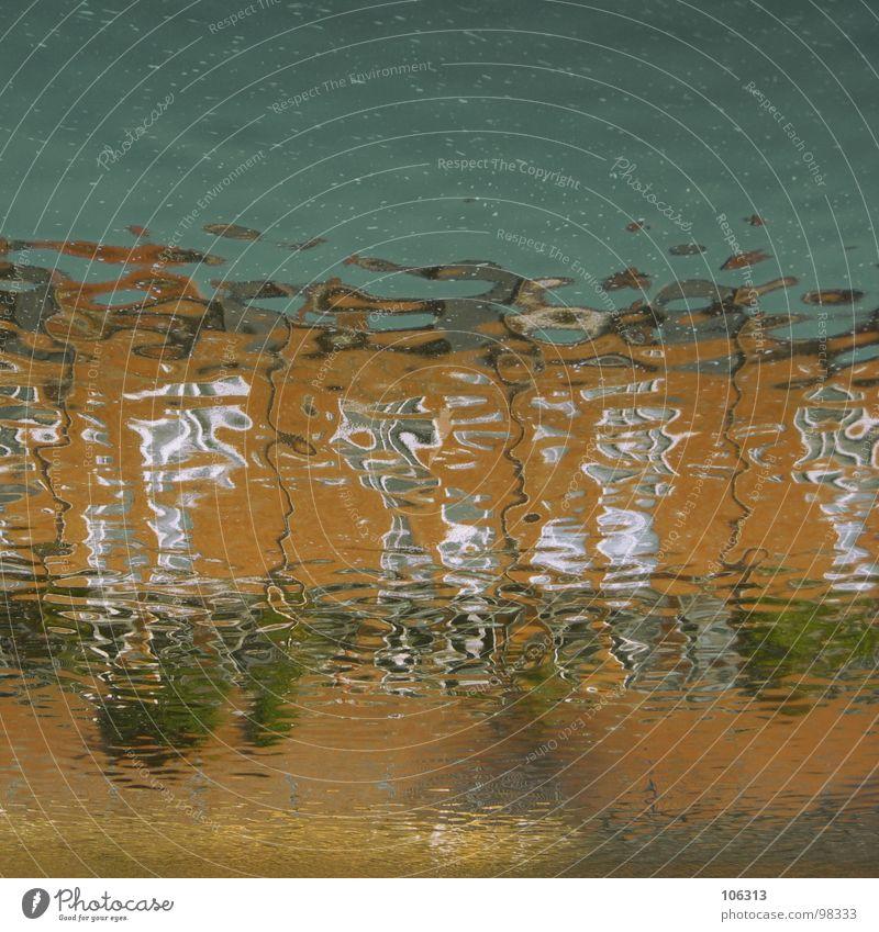 WELLENOPTIK verrückt Spielen Farbenspiel abstrakt Muster Reflexion & Spiegelung Wellen rot grün Fenster Bremen Weser Haus See Baum Wiese Ferne träumen organisch