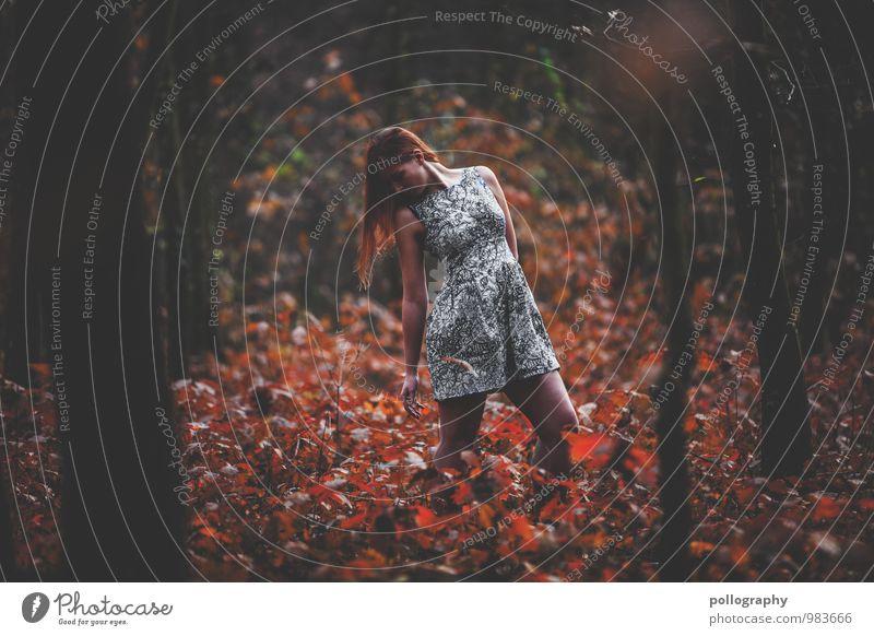 ... Mensch Frau Natur Jugendliche Pflanze schön Baum Junge Frau Blatt Landschaft 18-30 Jahre Wald Erwachsene Leben Herbst Gefühle