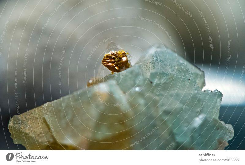 Prinzessin auf der ... Natur Urelemente Erde Stein gold Edelstein niedlich Kostbarkeit Sammelgut Mineralien Makroaufnahme Nahaufnahme Detailaufnahme