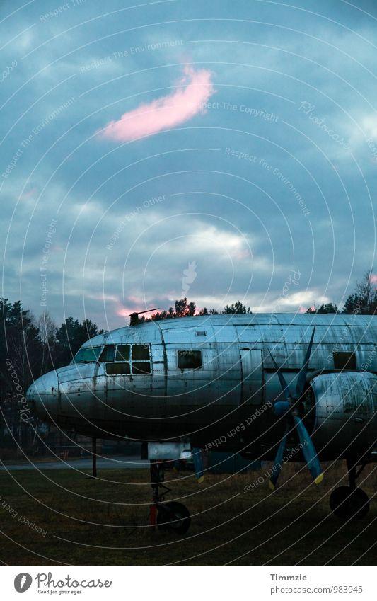 lost plane in lost place alt blau dreckig Flugzeug Vergänglichkeit kaputt Vergangenheit Verfall Skulptur Ausdauer standhaft Flugplatz Propellerflugzeug