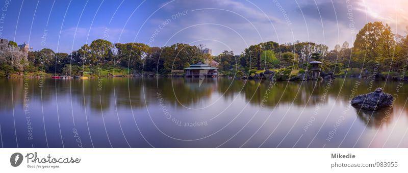 Kiyosumi Teien in Tokyo Himmel blau Pflanze grün Wasser Landschaft Tier Frühling Garten See Stimmung Park orange frei fantastisch Schönes Wetter