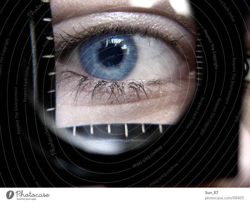 Einblick blau Auge Wimpern Lupe Pupille Regenbogenhaut vergrößert Fadenzähler Ungeschminkt
