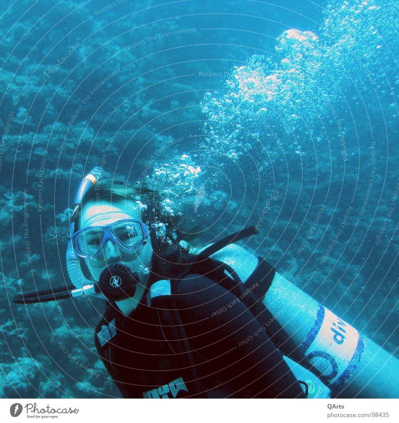 Diver with Bubbles Wasser blau Meer Auge Luft See Maske tauchen Flasche blasen Wassersport Tank Sauerstoff Schnorcheln Korallen Unterwasseraufnahme