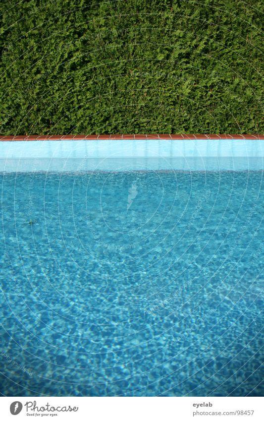 Nacktbaden ausdrücklich erlaubt ! Schwimmbad Hecke Sommer Ferien & Urlaub & Reisen Wohnung Ecke Chlor Umwälzung nass feucht Physik Kühlung grün leer privat
