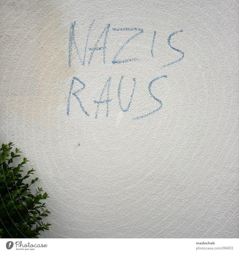 FORM FOLLOWS FUNCTION Wort Faschist Antifaschismus Vandalismus Schmiererei Buchstaben Redewendung Parole Politik & Staat links ungesetzlich Sträucher Wand