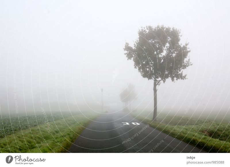 Zone 30 Umwelt Landschaft Luft Herbst Winter schlechtes Wetter Nebel Baum Feldrand Ortseingang Kleinstadt Stadt Stadtrand Menschenleer Verkehr Verkehrswege