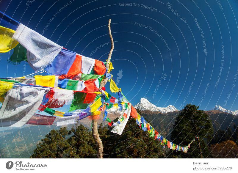 may the wind horse Natur Landschaft Wolkenloser Himmel Gipfel Schneebedeckte Gipfel ästhetisch blau standhaft Interesse Himalaya Himalaja Fahne Fahnenmast