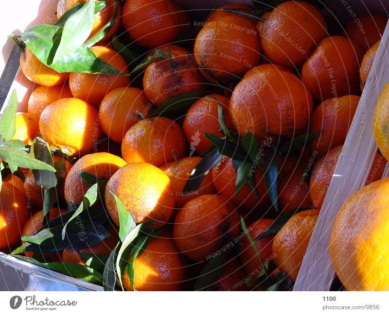 orangen Orange Licht Gesundheit Schatten Frucht