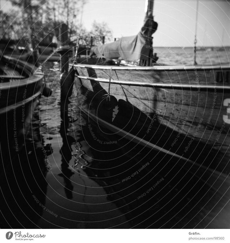 Boote Wasserfahrzeug Auswanderer Segelboot Reflexion & Spiegelung Wellen 3 Holz Tourist Meer rausfahren Sehnsucht Holga Baum Sträucher Steinhuder Meer Hannover