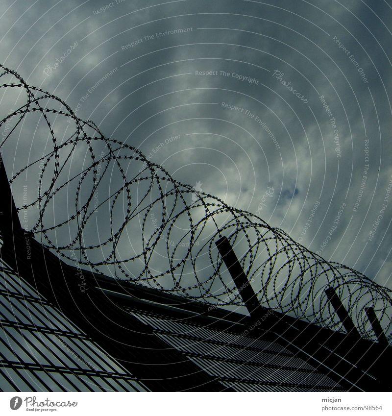 Isolation Zaun Stacheldraht Draht Eisen Wolken Spirale gefangen geschlossen Barriere Isolierung (Material) trist geschmückt Einsamkeit Angst Krimineller