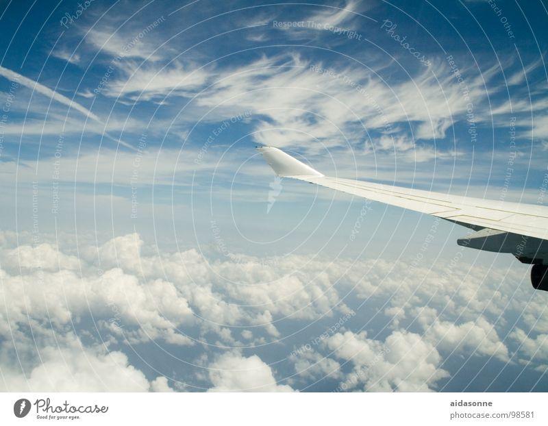 Himmelsflug weiß blau Sommer Wolken oben Flugzeug Luftverkehr Abheben
