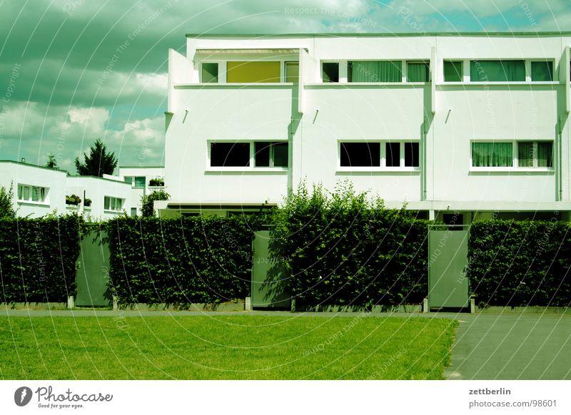 Reihentraumhaus Haus Einfamilienhaus Neubau Mieter Vermieter Hecke Fassade Eingang Eingangstür Zugang geschlossen abweisend Sommer Physik heiß Traumhaus
