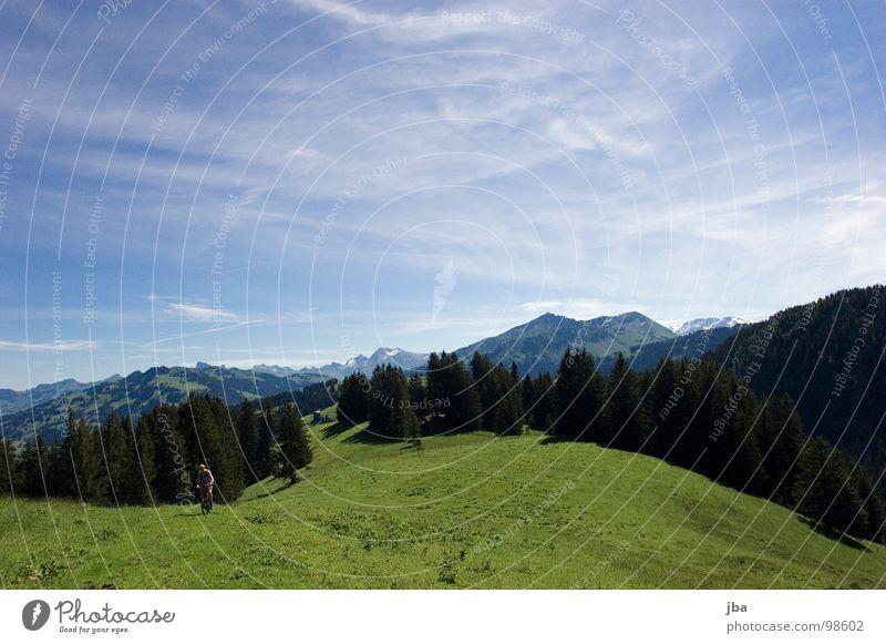 Biketour Alm Wiese Gras Tanne Wald Nadelwald Zaun Grenze Saanenland Wolkenfetzen wandern fahren strampeln Sommer Heimat Berge u. Gebirge Amerika Himmel hoch