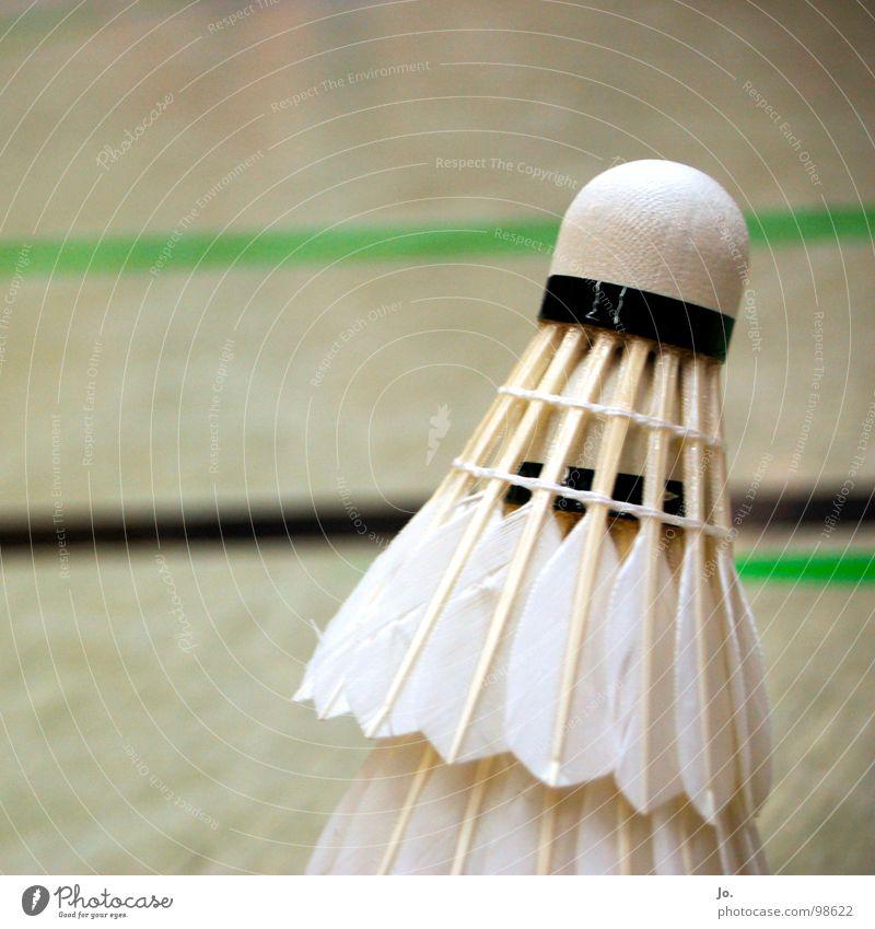 Federball Badminton Kork Spielen Gegner schlagen Ballsport Sport Lagerhalle TV Refrath 2. Bundesliga knicken Gänsefedern Rückschlag