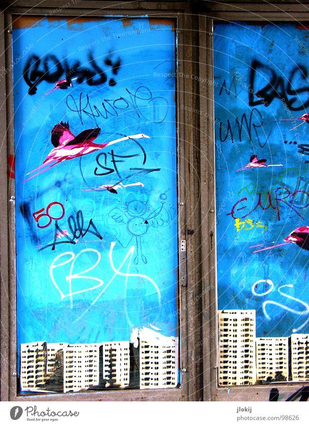 ...50 EURO... weiß blau Stadt Haus schwarz Ferne Farbe Fenster Graffiti Vogel Metall Kunst Hochhaus Perspektive gefährlich offen