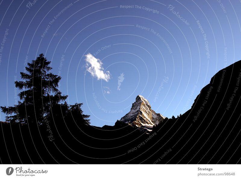 Matterhorn III Tanne Wald Hügel Beleuchtung glänzend Abendsonne schön prächtig Macht Gipfel Schweiz Kanton Wallis Bergsteiger besteigen wandern extrem steil