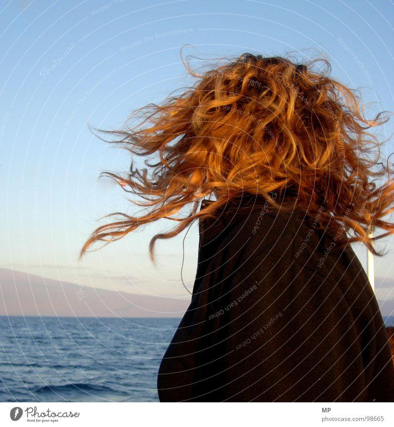 Seelöwe Frau Wasser Meer Haare & Frisuren Kopf Wind Locken Drehung Verwirbelung Biest