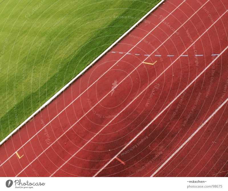 Loooos! weiß grün rot Sport Spielen Linie Kraft laufen Erfolg Spuren Grenze Schmerz Müdigkeit Rennbahn Muskulatur Ausdauer