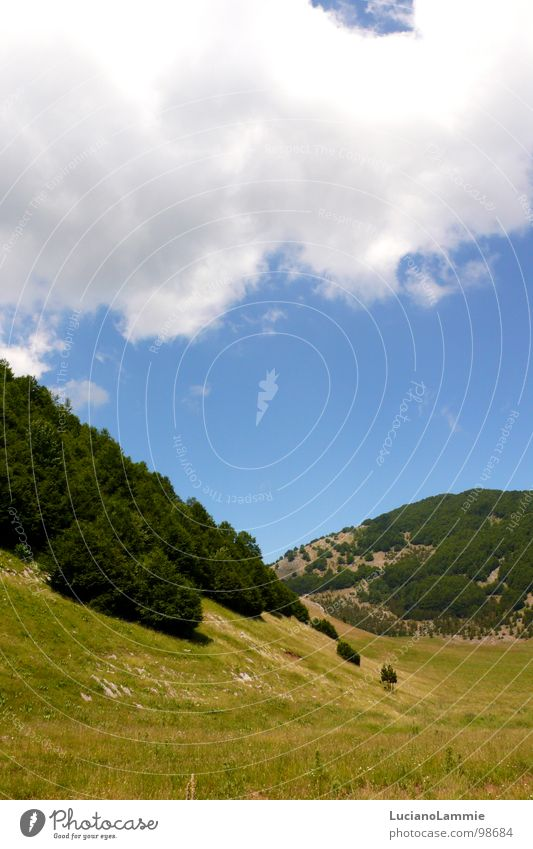Pollino Basilikata Himmel Natur Italien south italy pollino mountain lucania cloud sky tree sun white and blu