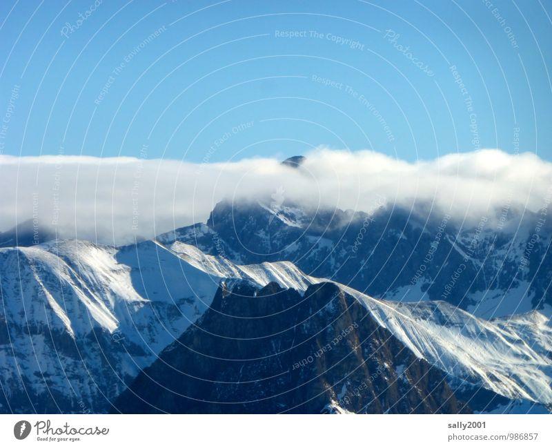 Hochnebel... Natur Landschaft Himmel Wolken Winter Schönes Wetter Nebel Schnee Alpen Berge u. Gebirge Gipfel Schneebedeckte Gipfel fantastisch Ferne gigantisch