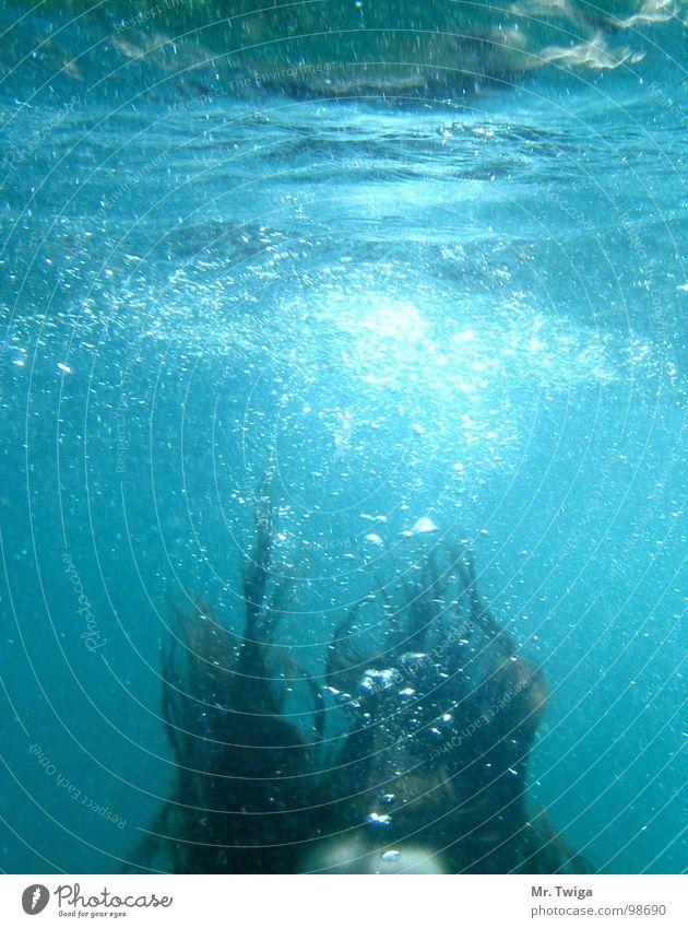 abgetaucht Wasser Sommer Haare & Frisuren Schwimmbad tauchen Schwimmen & Baden Luftblase untergehen ertrinken
