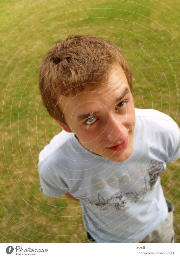 Was willst du? Mann Jugendliche blau Gesicht Auge Wiese Gras Garten lachen Haare & Frisuren Kopf Mund braun blond Nase T-Shirt