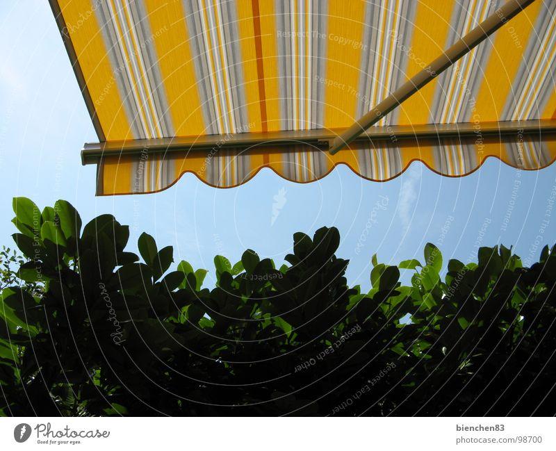 Sommer-Markise01 Sommer Ferien & Urlaub & Reisen gelb Garten Park Schutz Streifen Balkon Schönes Wetter Terrasse Hecke Wetterschutz Markise